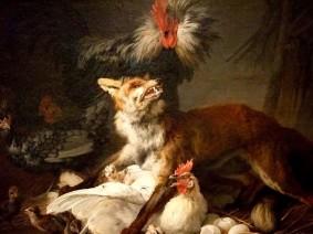 fox-in-a-chicken-yard